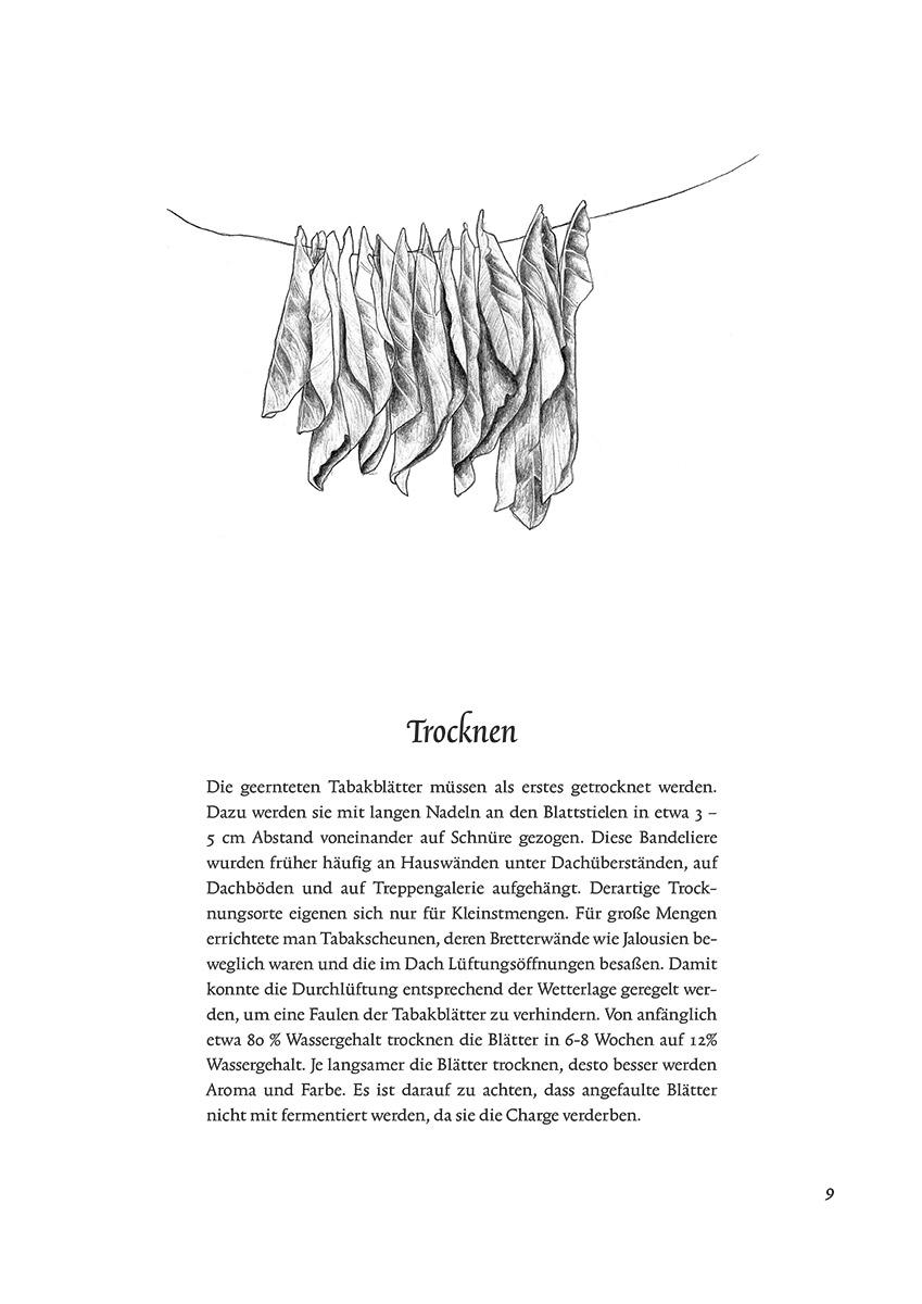 Illustration im Raumbuch